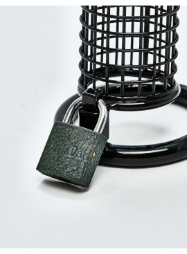 BDSM Chastity Cage from Black Line Lock